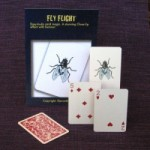 fly-flight