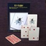 fly-flight